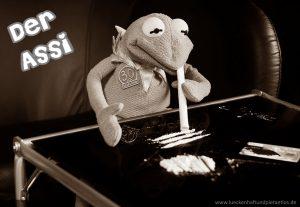 Kermit der Assi
